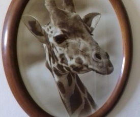Apartmán Žirafa